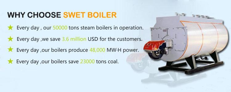 gas steam boiler